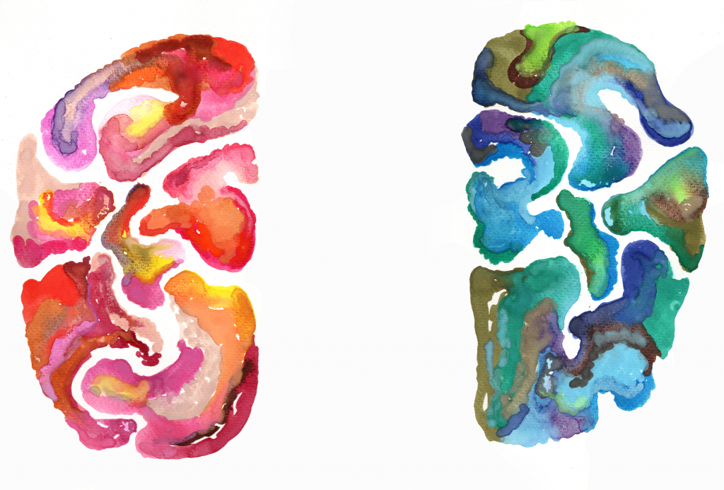illustration-the creative side of the brain, is it right brain versus left brain